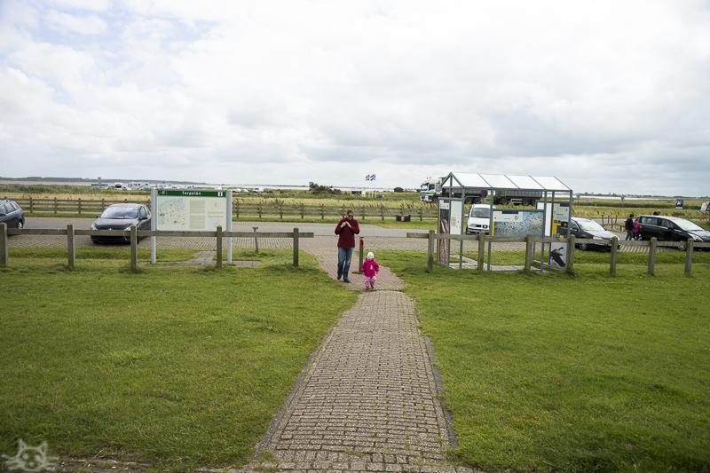 Friesland300715-1
