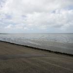 Friesland300715-2