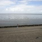 Friesland300715-3