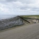 Friesland300715-9