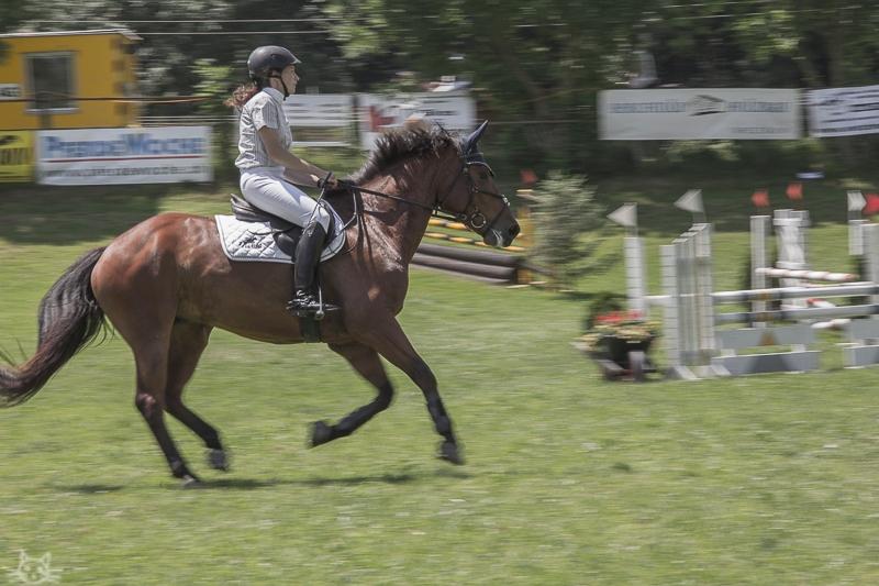 rossweidli2012-3