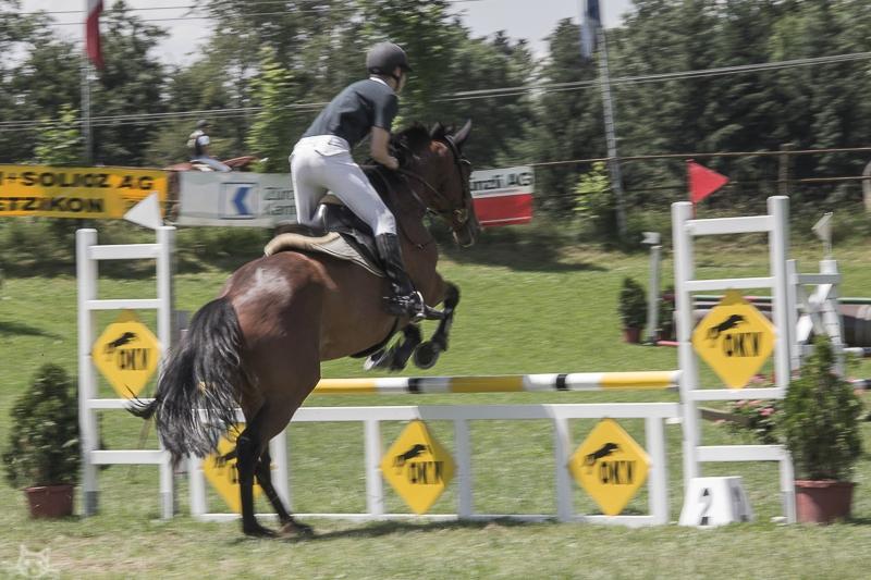 rossweidli2012-6