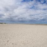 Friesland31072015-10