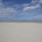 Friesland31072015-11