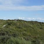 Friesland31072015-25